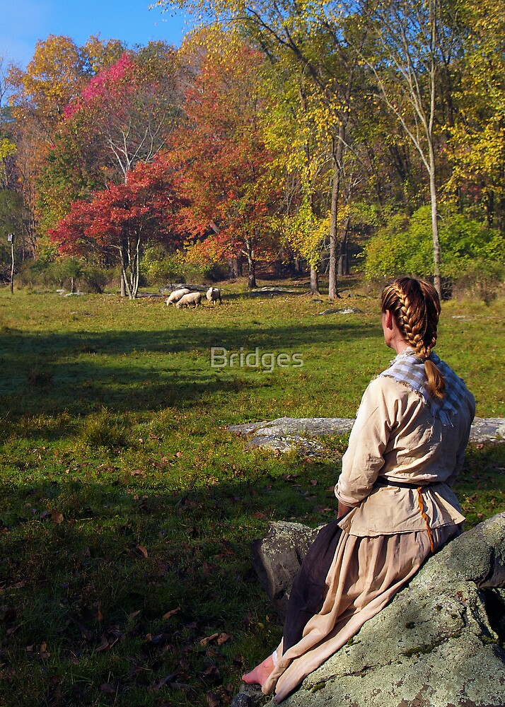 Watching The Flock by Bridges