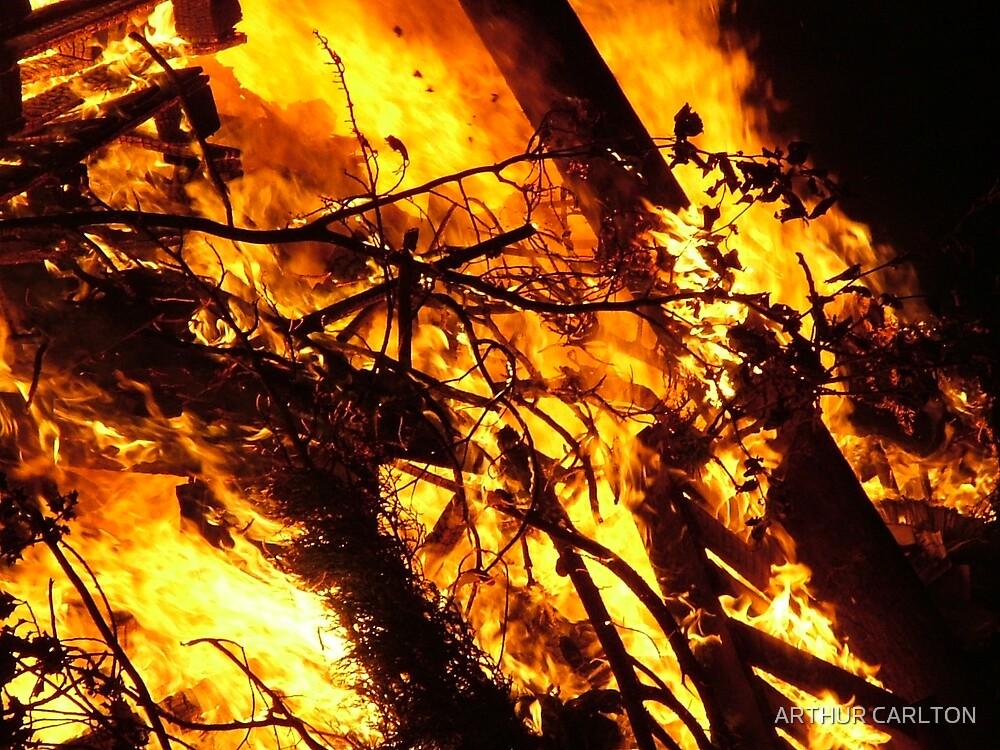 BURNING BRANCHES by ARTHUR CARLTON