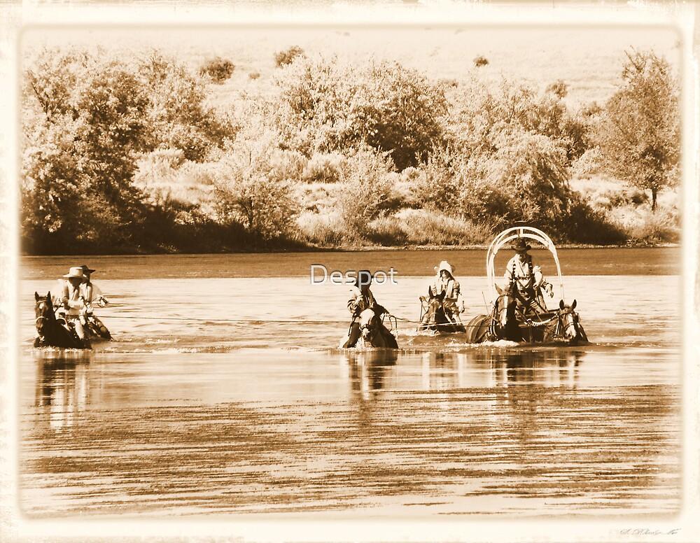 Snake River Crossing by Despot
