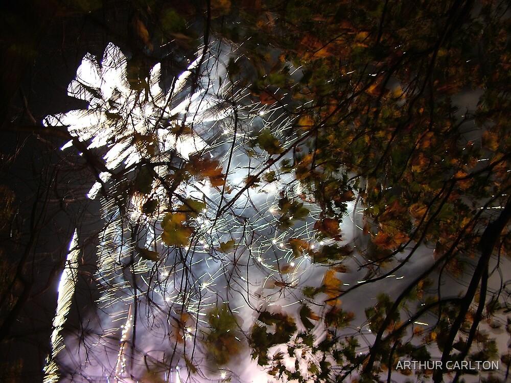 FIRE DISPLAY 2 by ARTHUR CARLTON