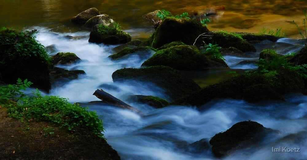 The River Alb.....Black Forest by Imi Koetz