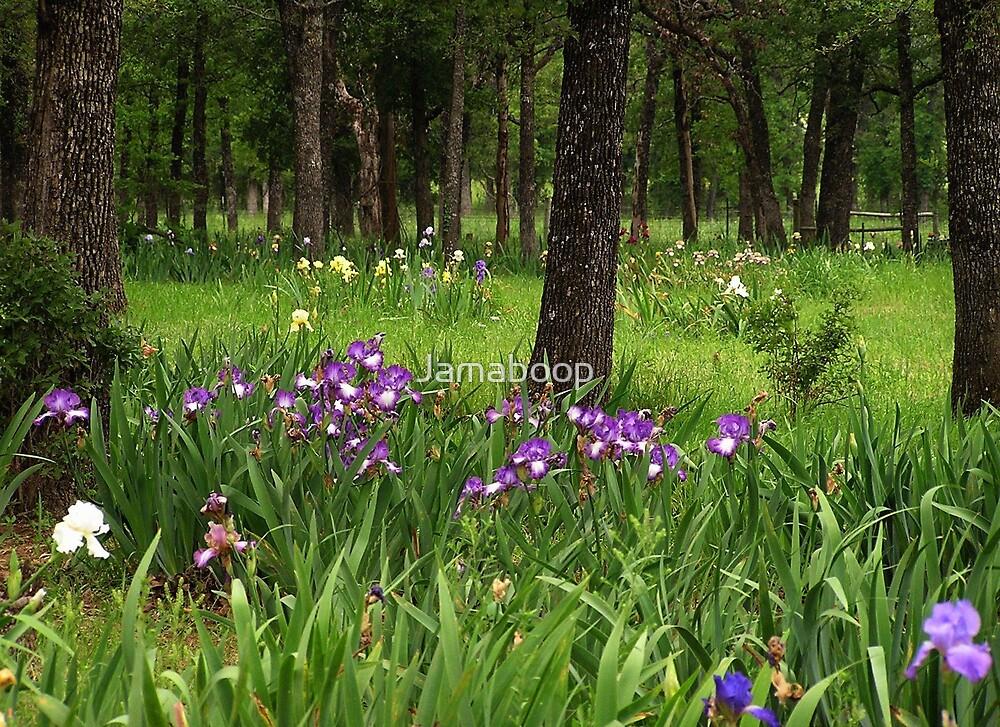 Favorite Garden Spot (Texas)  by Jamaboop