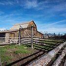 Mormon Row by jswolfphoto
