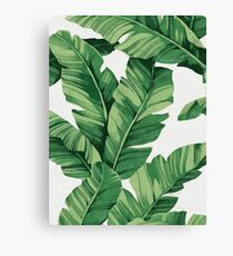Tropical banana leaves Canvas Print