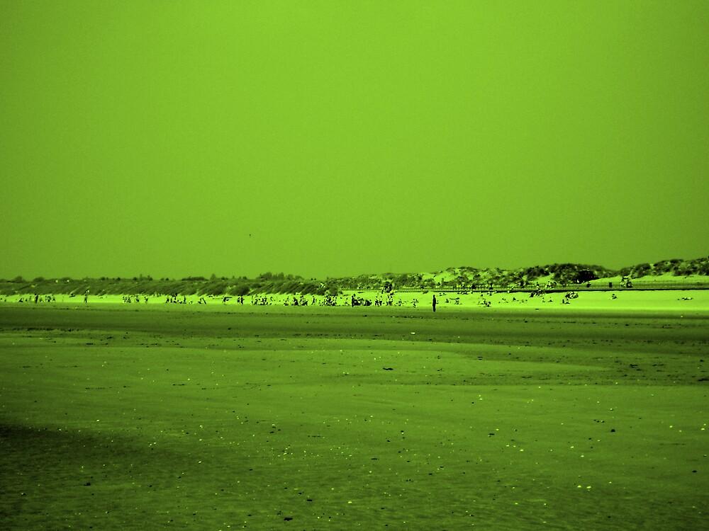Green Beach by Hippyman