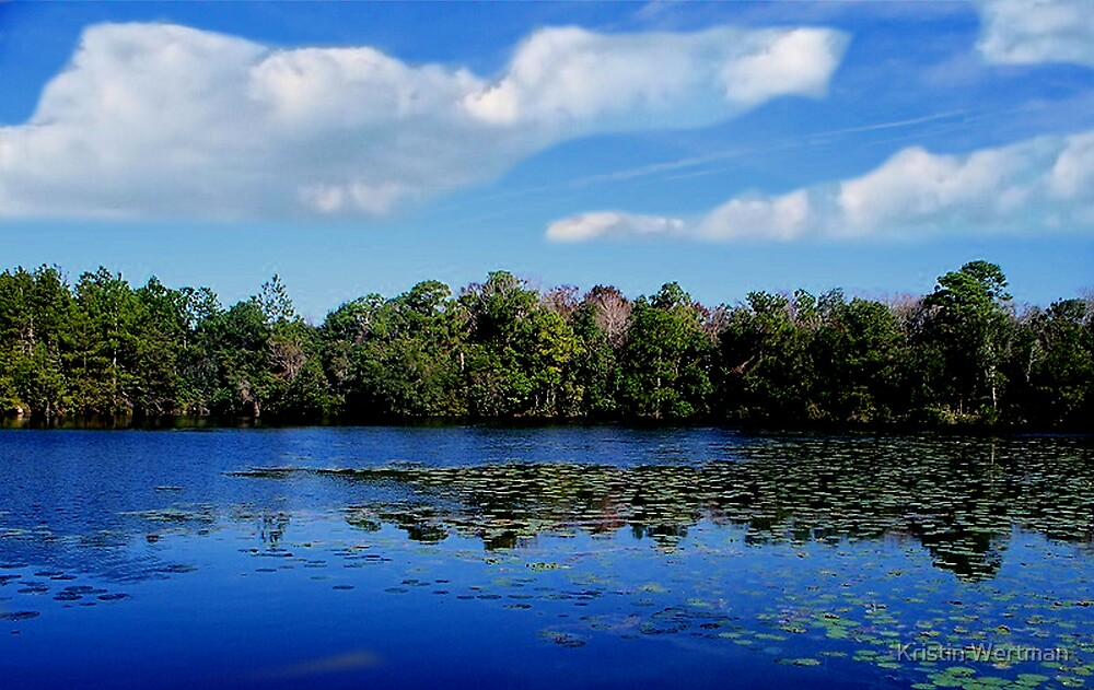 Thinking Pond by Kristin Wertman