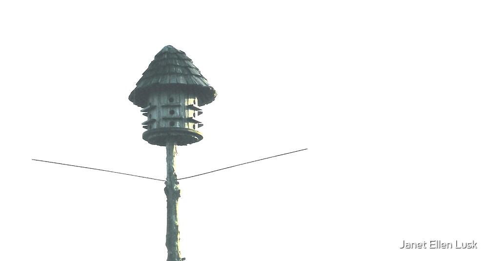 A Marlin's Birdhouse by Janet Ellen Lusk