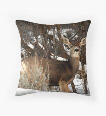 Mountain Mule Deer Throw Pillow