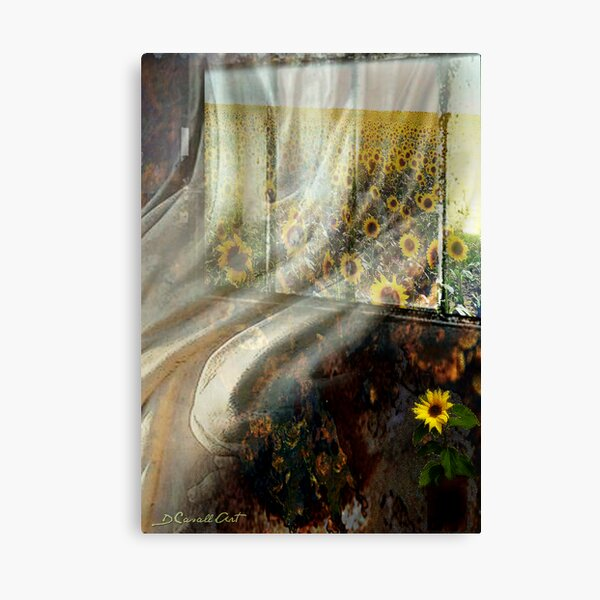 Morning glory at my window... Canvas Print
