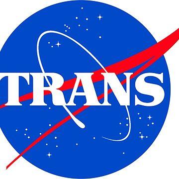 Nasa Trans Pride Logo by chalicevvinter