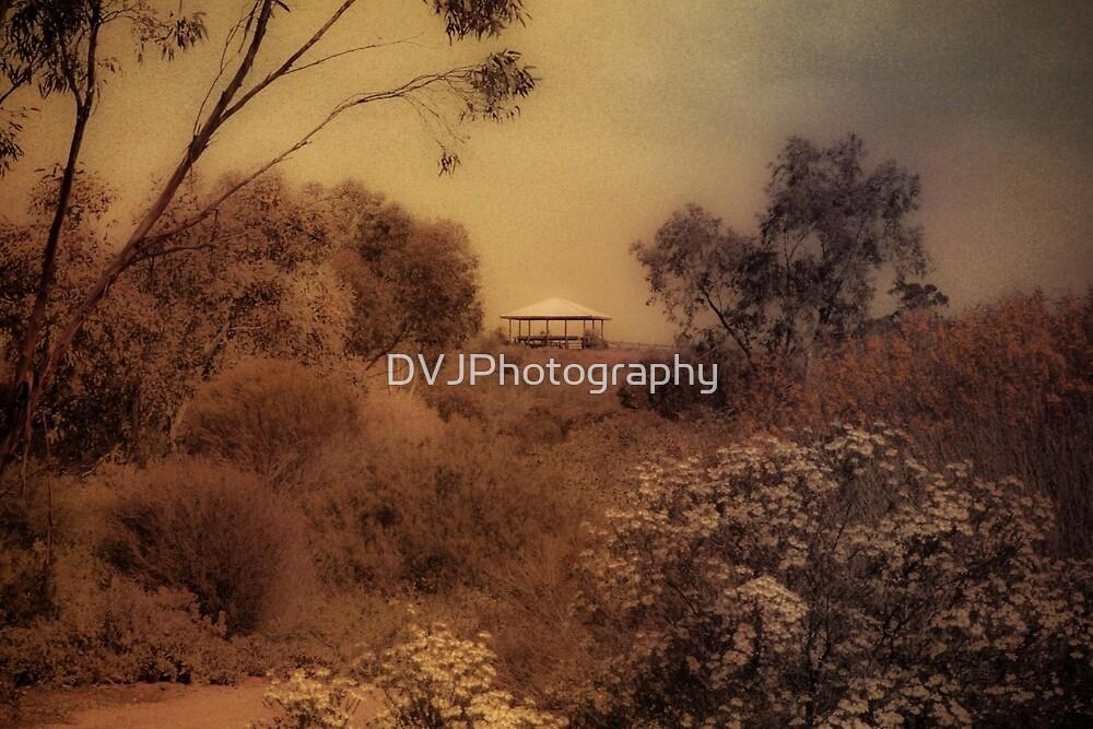 Shelter by DVJPhotography
