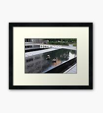 BBC Ducks Framed Print