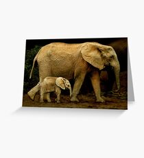 Strolling With Mom Greeting Card