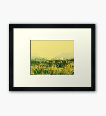 Yellow plains Framed Print