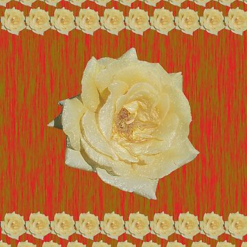 Yellow Rose Distorted on Red and Green by STHogan