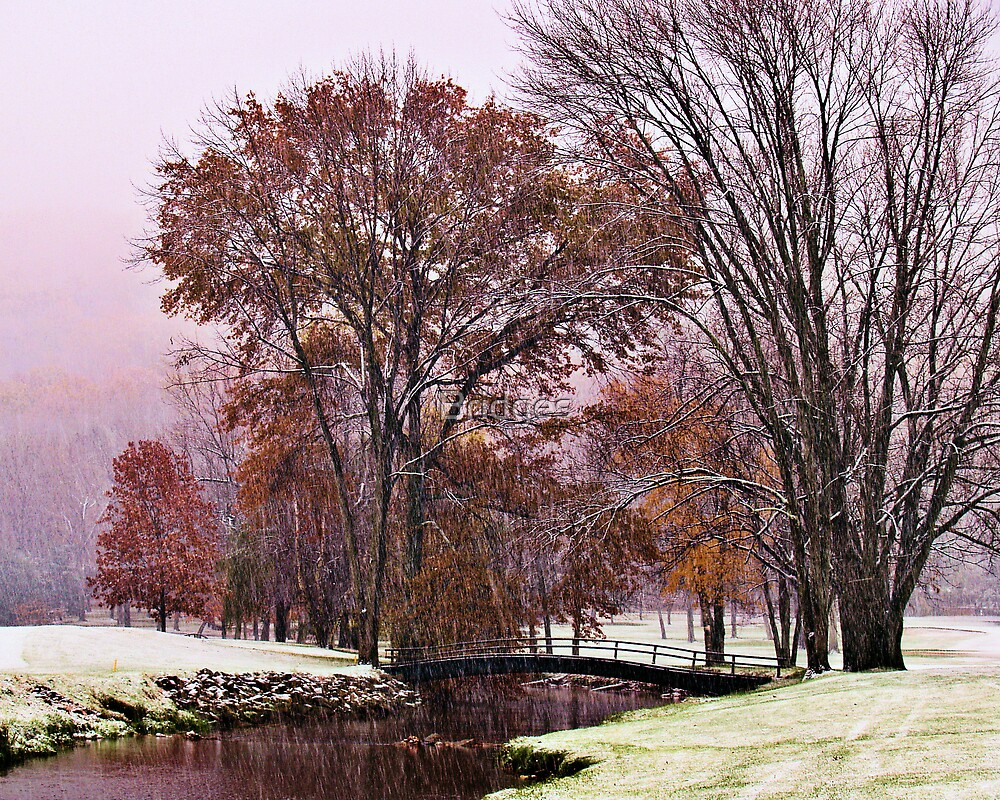 Fall Snow Along Saucon Creek by Bridges
