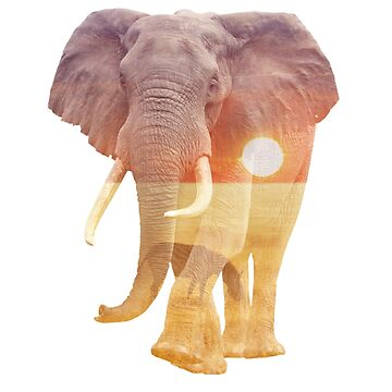 African Elephant Double Exposure by jaydan80