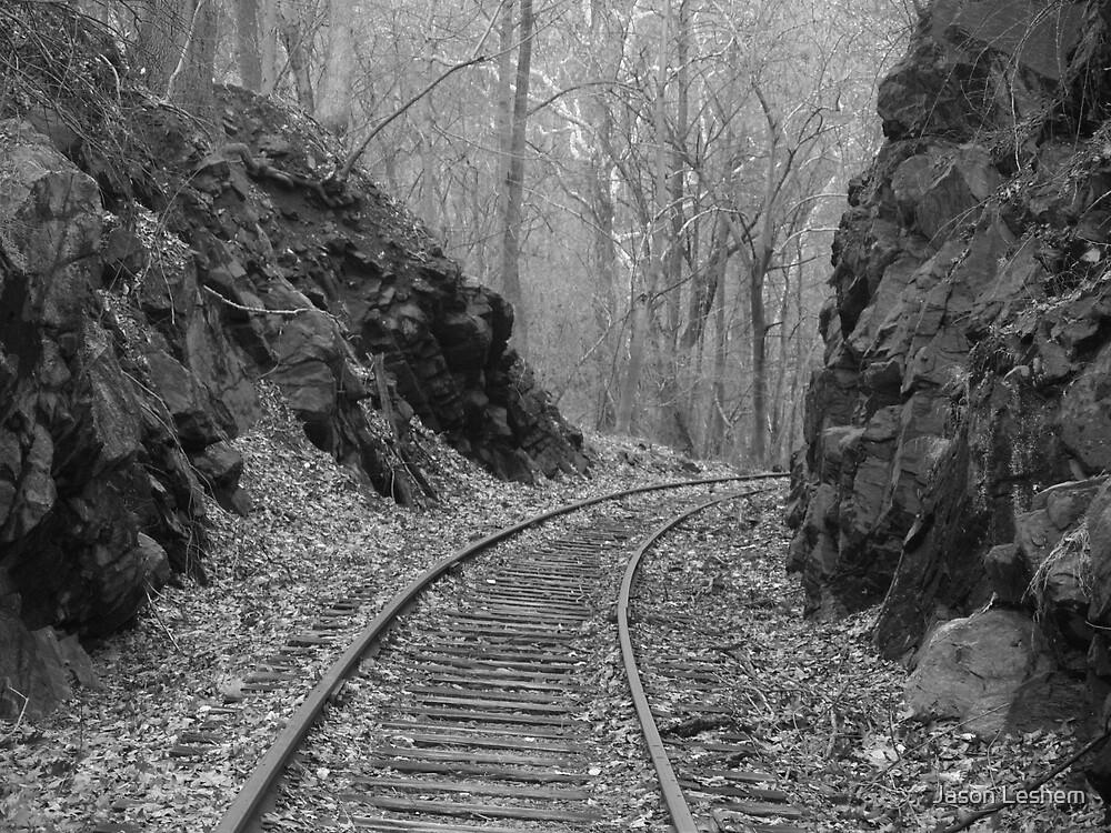 Desolate Tracks by Jason Leshem