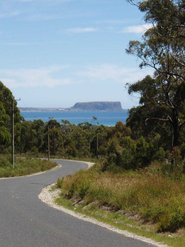winding along back towards the Nut, Stanley, Tasmania by gaylene