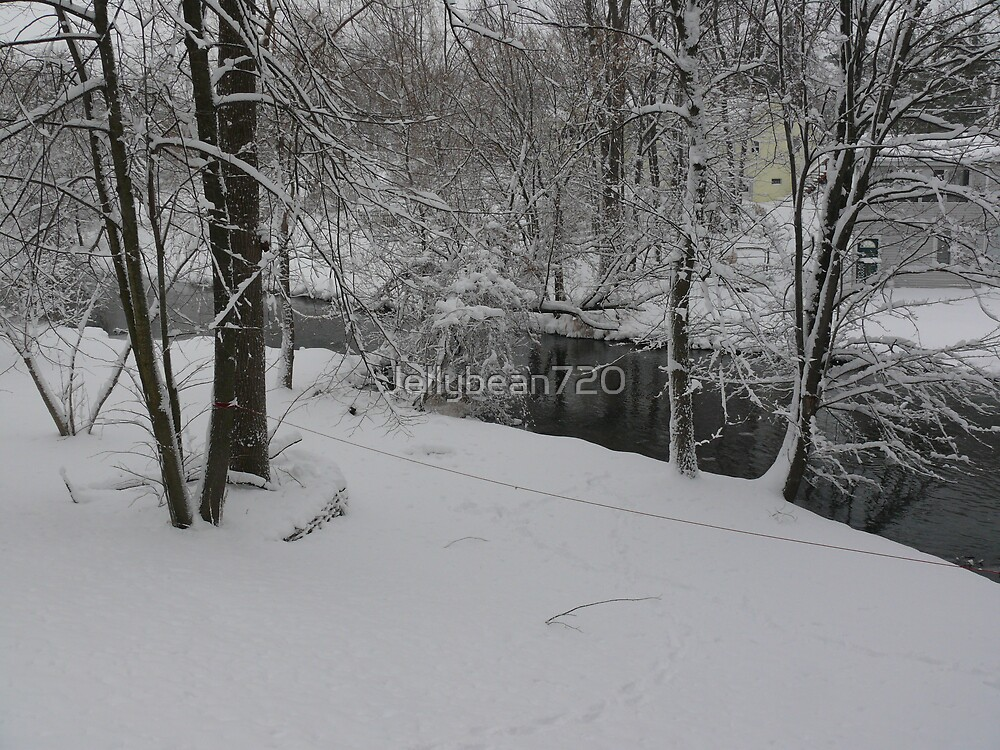 Snowy River by Jellybean720