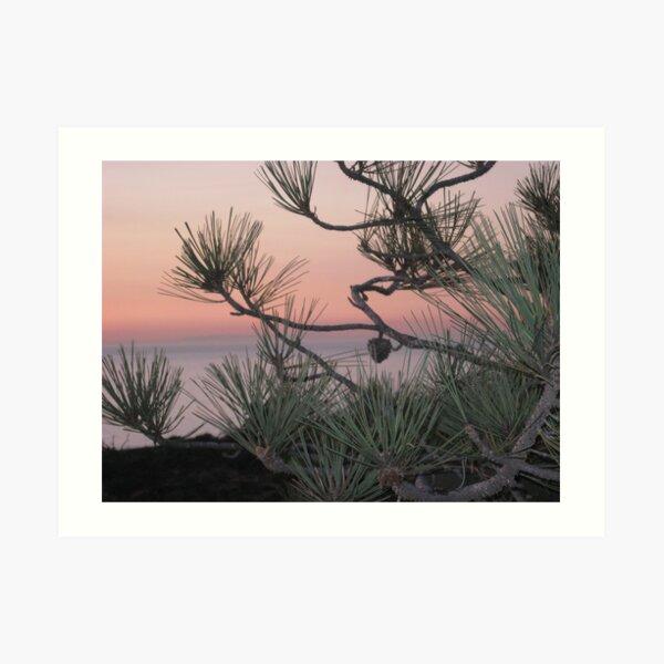 pastels & pines Art Print