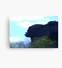 Stone Face Rock Canvas Print