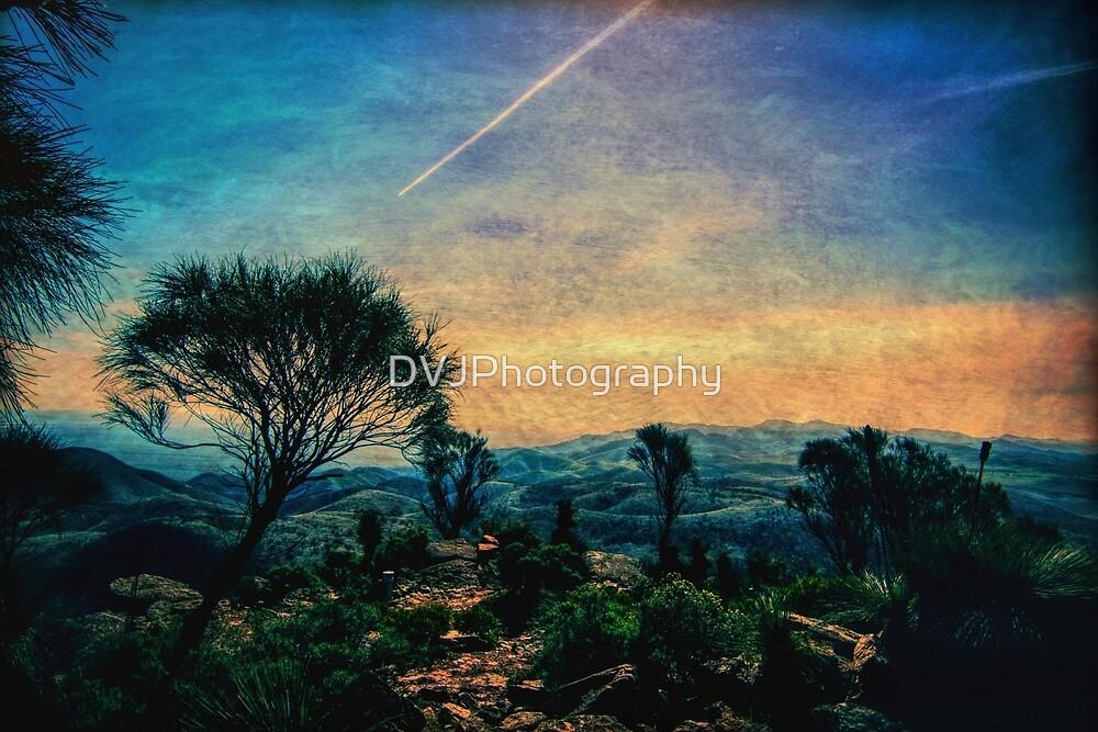 Mountain Vista by DVJPhotography