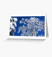 Snow on the Treetops Greeting Card