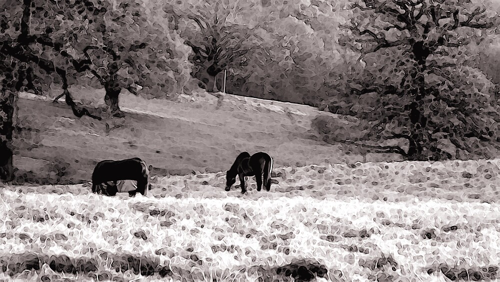 Out to Graze by kitlew
