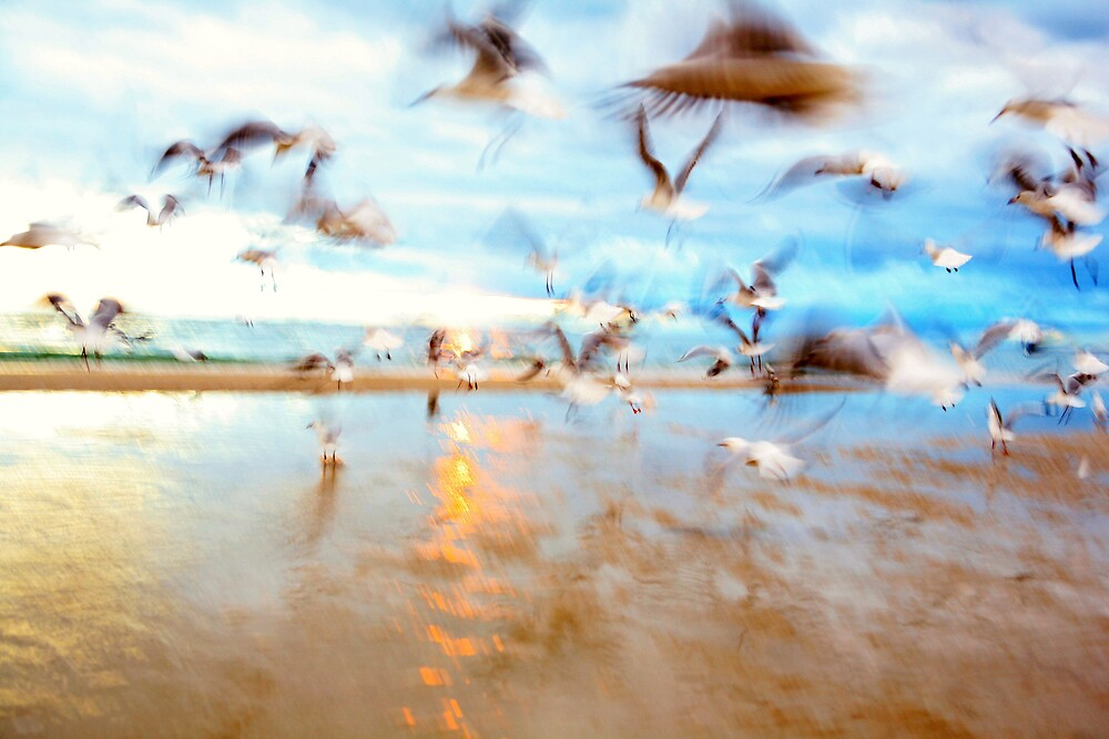 Taking Flight Abstract by dale73