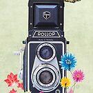 Rollop by Keith G. Hawley