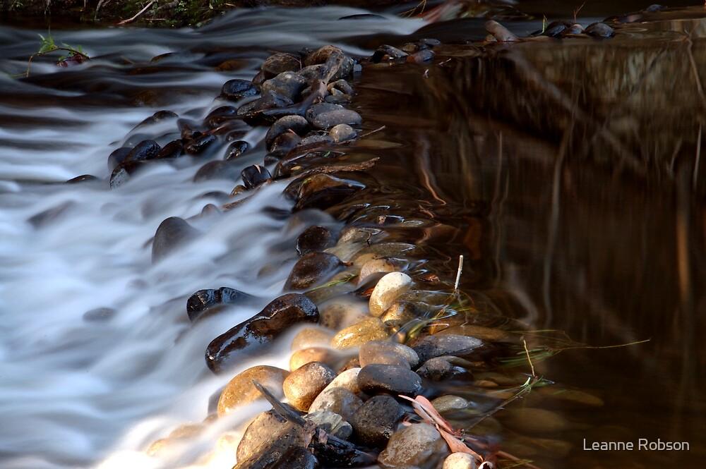 Misty Waters by Leanne Robson