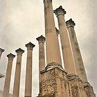 Cordoba's Corinthian Columns by Alexandra Lavizzari