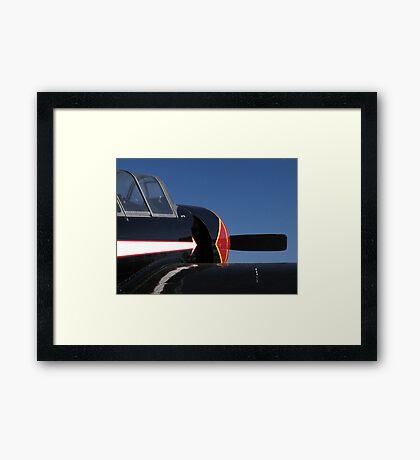 Black Yak Framed Print
