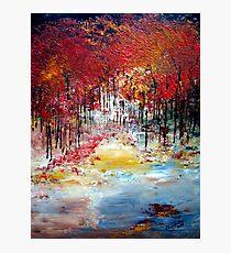 Trees in autumn Photographic Print