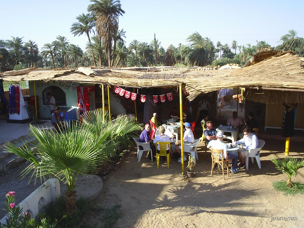 Rest stop between Luxor and Aswan by jeanemm