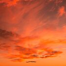 Arizona Sunset by Dave Hare