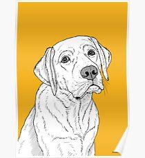 Labrador-Hundeportrait Poster