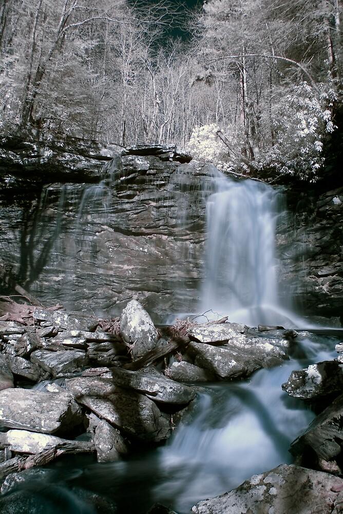 Falls of Hills Creek by David Miller