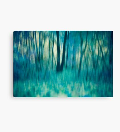 Whispers in The Trees Canvas Print
