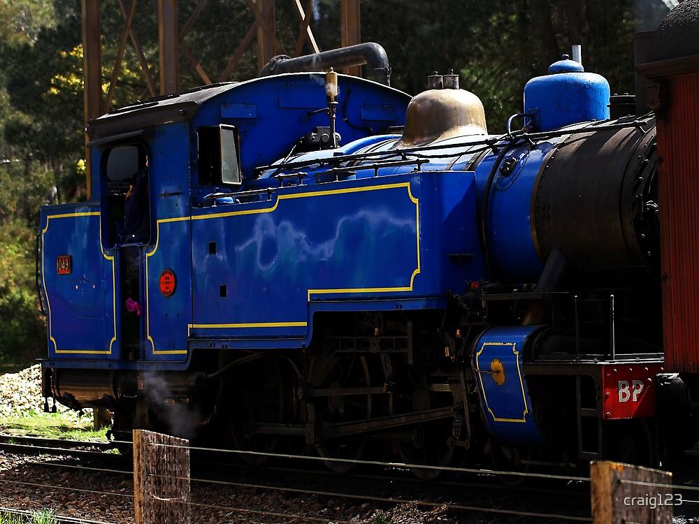 The blue train by craig123