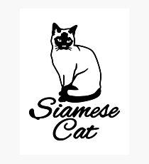 Lámina fotográfica gato siames