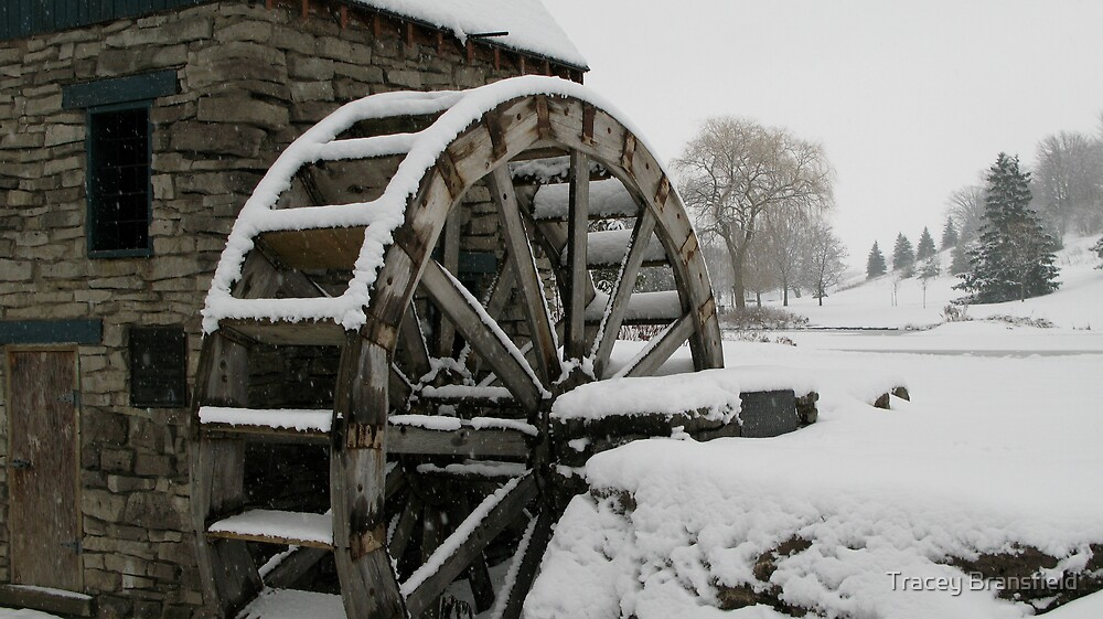 Water Wheel by Tracey Bransfield