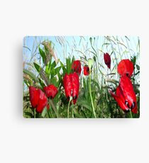 Landscape Close Up Poppies Against Morning Sky Canvas Print