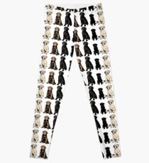 Rainbow of Puppy Love Leggings