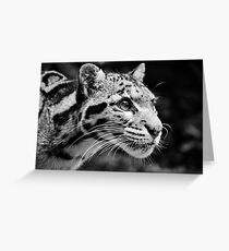 Clouded Leopard 1 - B&W Greeting Card