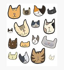 cats, cats, CATS Photographic Print