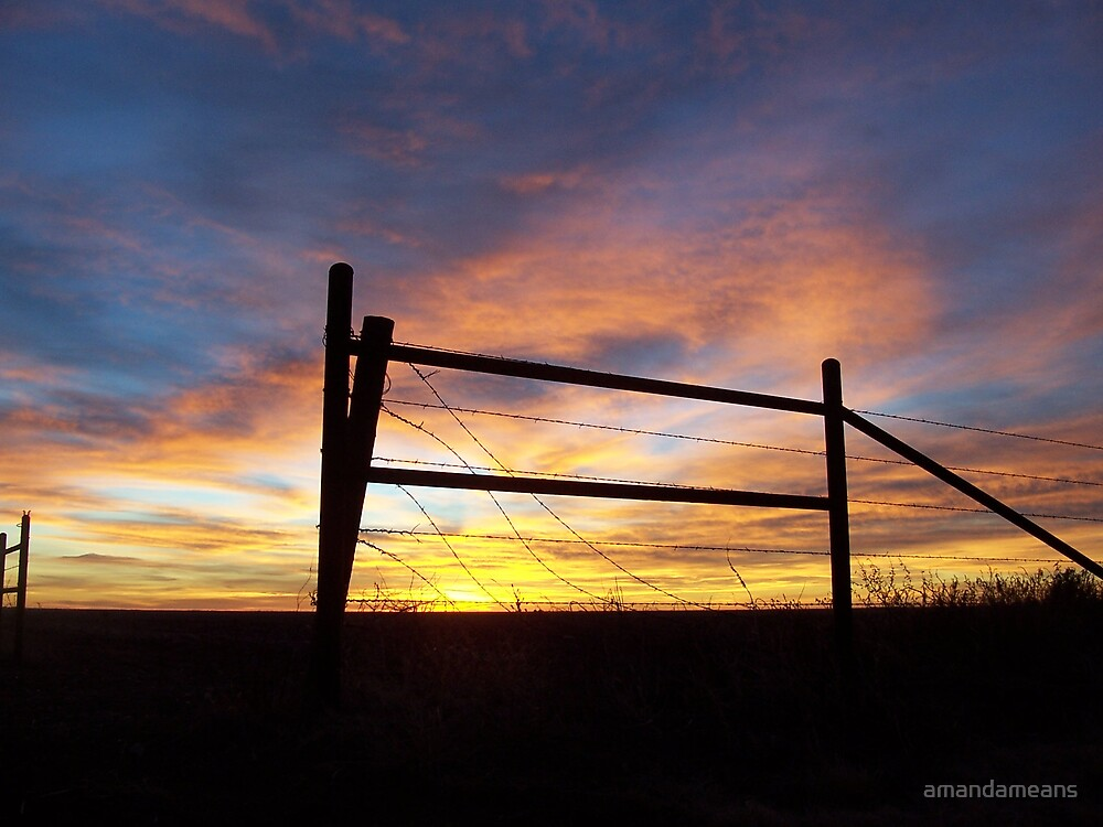 Fence Post at Sunrise by amandameans