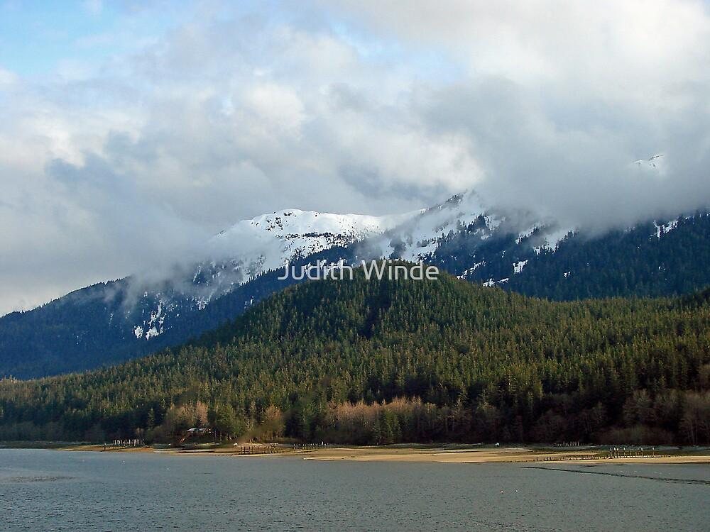 Alaska Shoreline by Judith Winde