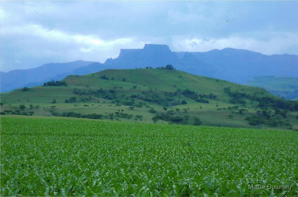 Drakensberg Mountains, South Africa by Matte Downey